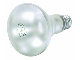 Indoor Spotlight, 65 Watt