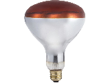 Infrared Red Bulb Heat Bulb, 250 Watt