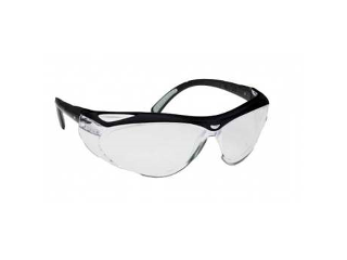 Envision Safety Glasses (Lens Style)